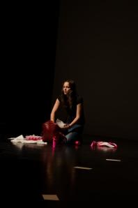performance Les Poulpes-6